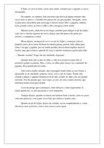 8 - História João e o Pé de Feijão